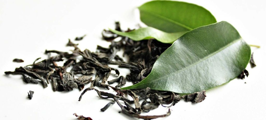 Grüner Tee Osteoporose Naturheilkunde Ernährungsmedizin