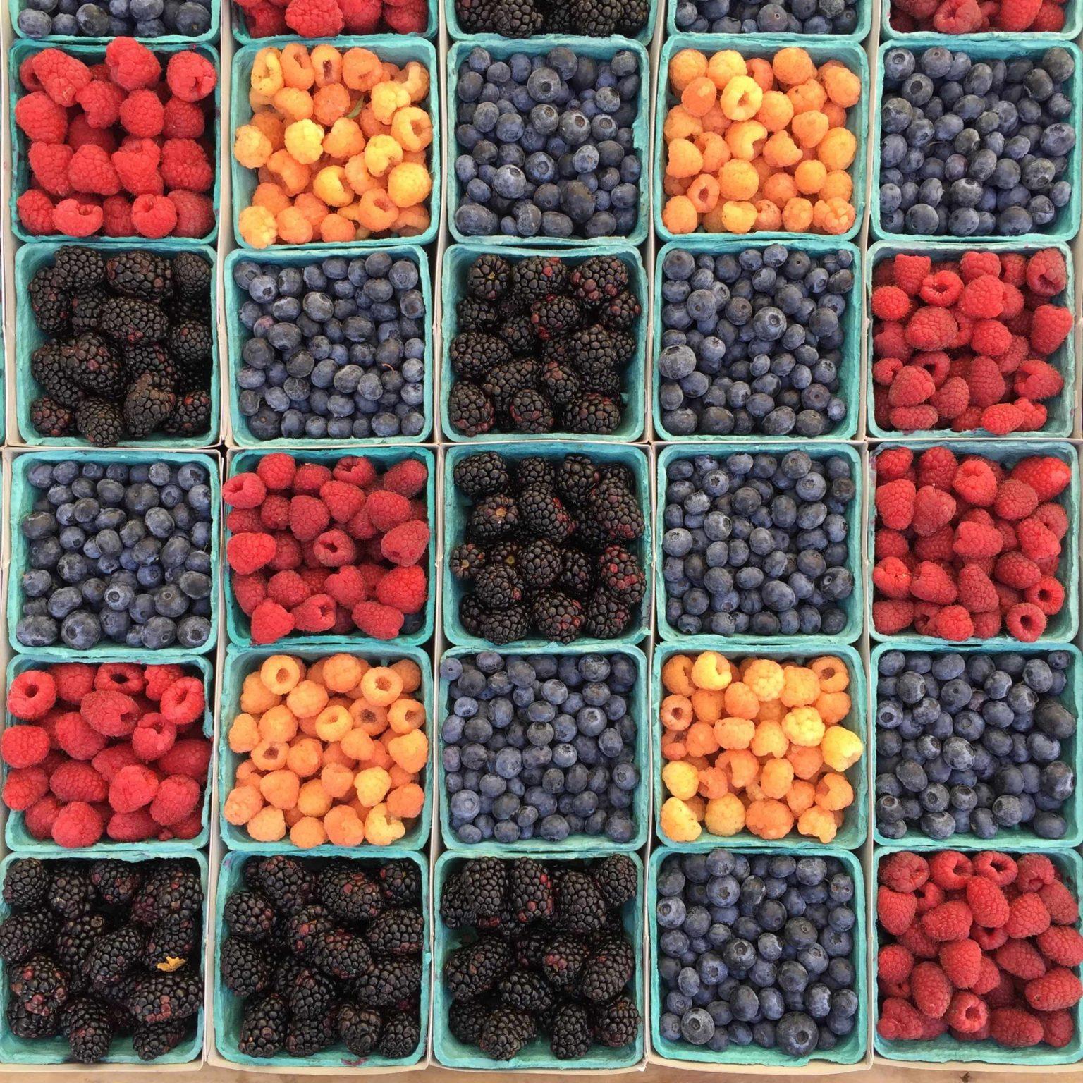 Lebensmittel bei Osteoporose Ernährungsmedizin Beeren